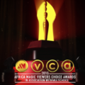 Missed the 2016 AMVCA? We've got you covered!